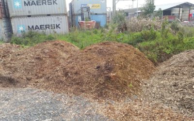 Woodchips – What to do?